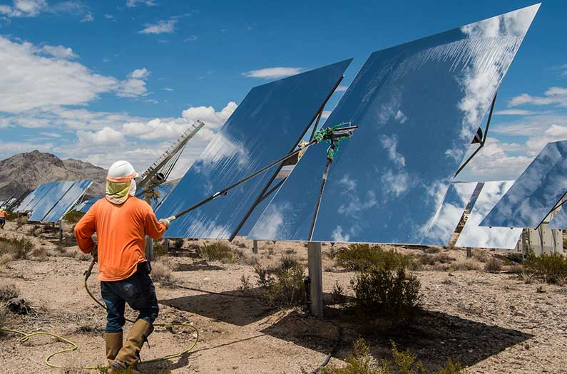 Can desert plants and solar panels live in harmony? Sometimes, yes